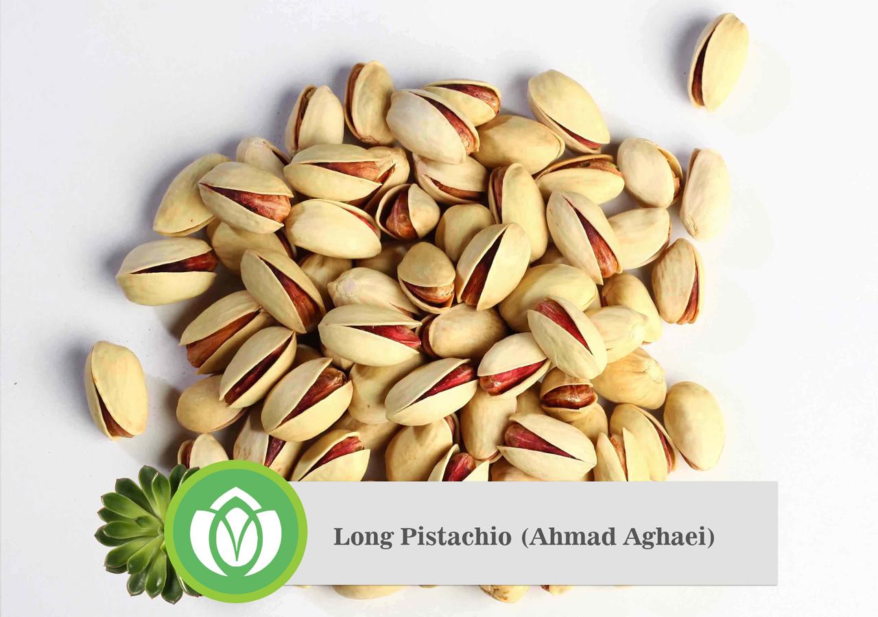 Long Pistachio Ahmad Aghaei